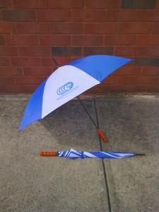 Umbrella-225x300.jpg